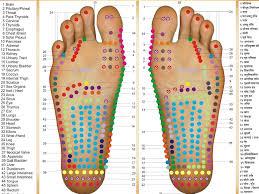 Marma Chart Massage Ayurveda Therapies Santosha School