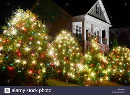 charming design red green and white lights outdoor trees have been decorated with