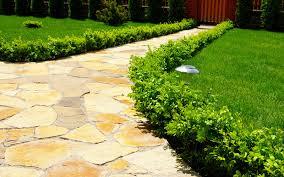 garden path stepping stones 12