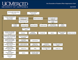 Student Life Org Chart Organizational Chart Student Affairs