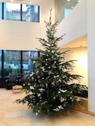 office christmas trees. office christmas tree 12ft white and silver trees