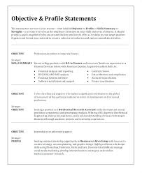 Professional Resume Objective Examples Delectable Make Resume For Job Examples Of Good Resumes For Jobs Resume