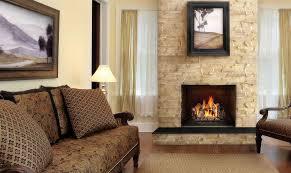 18 vented napoleon fireplaces