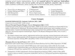 Amazing Pmo Resume Photos Simple Resume Office Templates