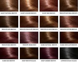 Dreamron Hair Color Chart Hair Color