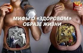 Рефераты на тему здоровый образ жизни по физкультуре работ  пример здорового и не здорового образа жизни