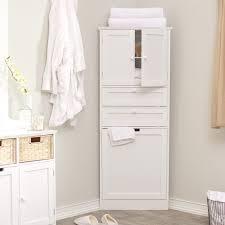 Large Bathroom Storage Cabinet Bathroom Design Modern Green Bathroom Flooring Ceiling Brown