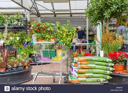 homebase garden centre showing a trolley full of plants