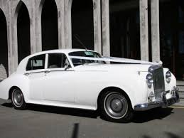 welcome to absolute party buses absolute party busesabsolute Wedding Cars Tralee Wedding Cars Tralee #25 wedding cars tralee
