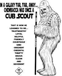 Akela S Council Cub Scout Leader