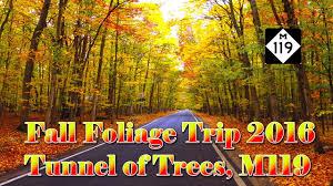 fall foliage trip 2016 on m119 tunnel