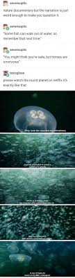 13 Times Nature Documentaries Confused The Hell Out Of Tumblr