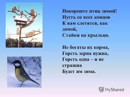 Презентация на тему Проект на тему Птицы зимой Руководитель  10 Покормите птиц зимой