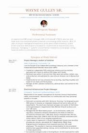 Network Technician Resume Samples Enchanting Resume Sample Electrical Utility Operations Manager New Gallery