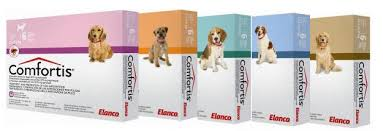 comfortis best price. Wonderful Comfortis Best Price On Comfortis Around Match Dog Has 1 Flea Needs To Be In  Comfortis 3 Pack And Clean Water Along With Your Will Find Plenty Of Way Example Intended E