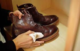remove mold from leather in simple ways