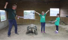 How an eight-year-old fed a zoo for a month | Hereford Times