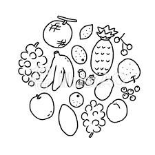 果物のイラスト素材白黒ぬりえ用イラスト No 1567163無料