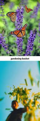 gardening basket 115 20180808061025 53 olive garden number newton aycliffe gardening tips for the month of