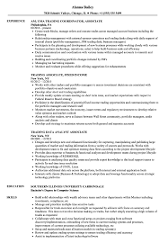 Sample Traders Resume Trading Associate Resume Samples Velvet Jobs 22