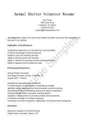 Volunteer Work On Resume Template Resume Template Volunteer Work 60