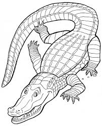 Small Picture Crocodile coloring page Crocodile free printable coloring pages