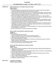 Sales Director Resume Sample How To : How to Make a Car Salesman Resume