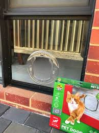 signature glass pet doors perths pet door kings perth wa