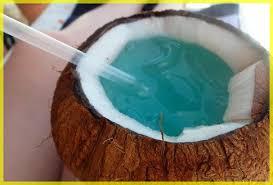 「ココナッツ」の画像検索結果