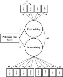 fig 1 structural equation model