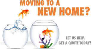 moving companies knoxville tn.  Knoxville To Moving Companies Knoxville Tn M