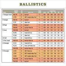 Free 3 Sample Ballistics Charts In Pdf
