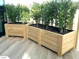 large tree planter box long planter box home ideas on tree planter box large wood boxes