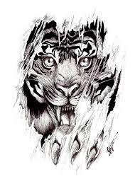 Význam A Návrhy Tetování Tygr Tetováníblogcz