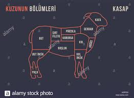 Meat Cuts Poster Butcher Diagram And Scheme Lamb Stock