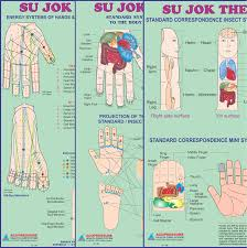 Sujok Therapy Points Chart Freeware