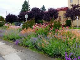 Small Picture Download Mediterranean Garden Garden Design