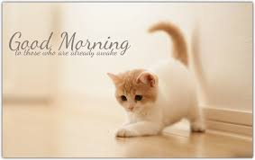 05 cute good morning pictures in hd