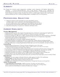 Example Professional Summary For Resume Examples Of Resumes