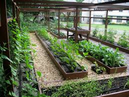 Small Picture Vegetable Garden Design Ideas had a full shade vegetable garden in