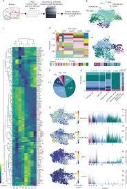 Mapping Microglia States In The Human Brain Through The