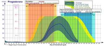 Fil Progesterone During Menstrual Cycle Png Wikipedia