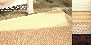 sal cleaning sisal rugs dog urine