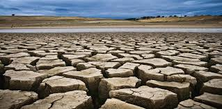 essay on drought speech about drought my study corner essay on drought speech about drought