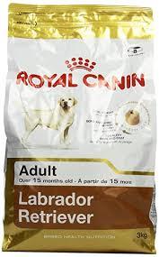 <b>Royal Canin Labrador</b> Adult, 3 kg: Amazon.in: Pet Supplies