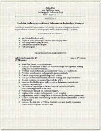 Information Technology Resume Occupational Examples Samples Free