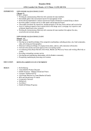 Sample Resume With Sabbatical New Home Sales Consultant Resume Samples Velvet Jobs 12