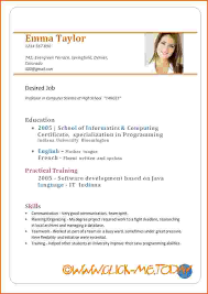 Cv Resume Template Doc | Example Template