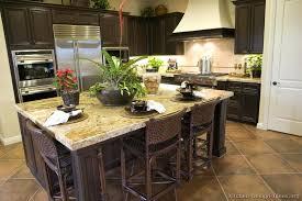 kitchen ideas dark cabinets traditional dark wood walnut kitchen