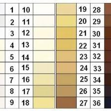 Fischer Saller Scale Chart Fischer Saller Scale 12 Download Scientific Diagram